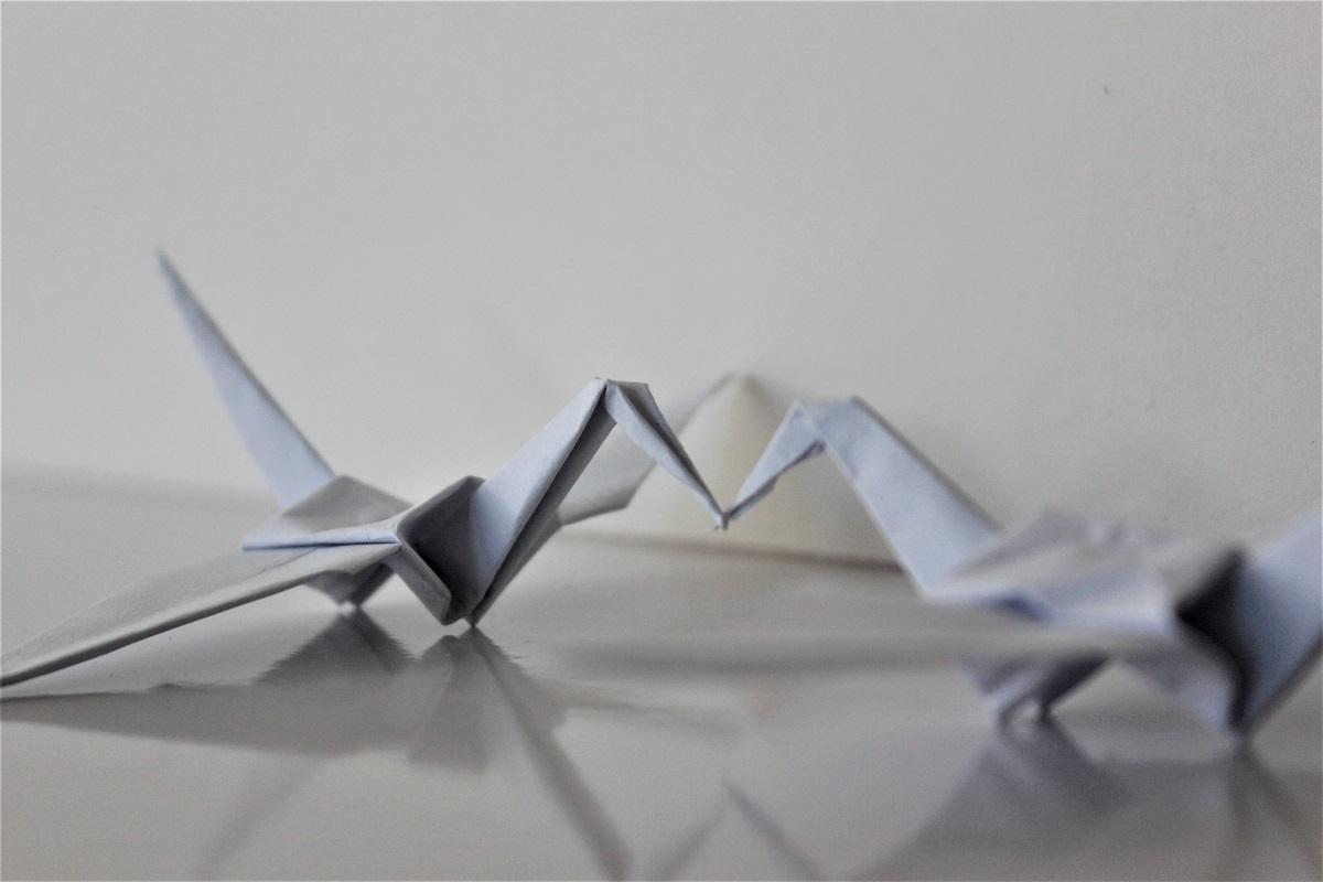 Orgami paper cranes